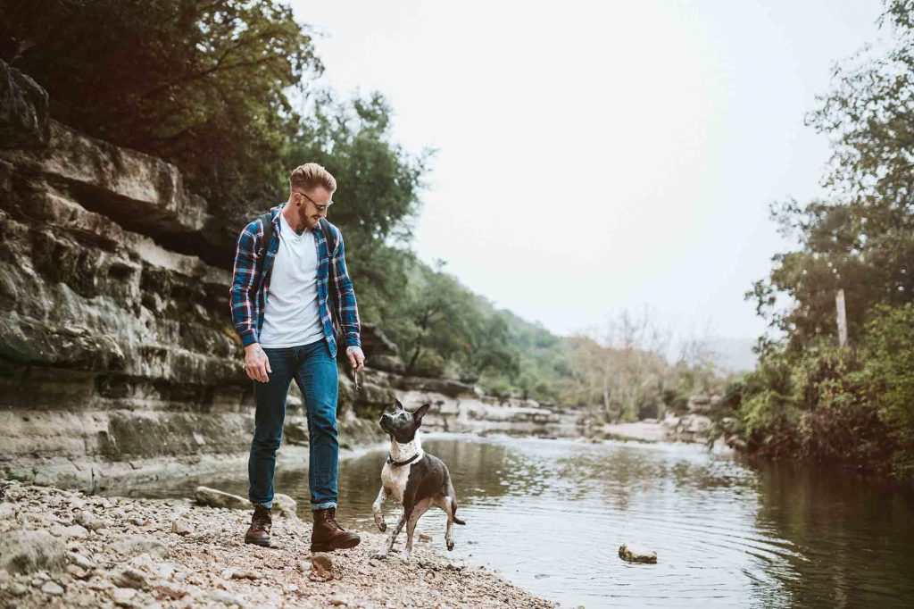 local hikes with dogs are a great way to exercise your pet