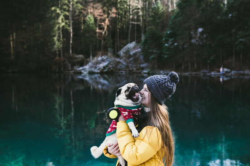 A pampered pet pug near a lake with its owner. The pug is wearing a red sweater and its owner is wearing a blue hat and yellow jacket.